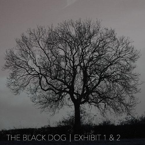The-Black-Dog Exhibit