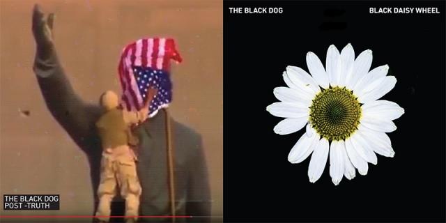 Post -Truth and Black Daisy Wheel